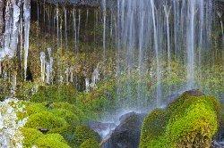 苔が綺麗な吐竜の滝