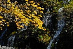 黄葉と滝が美しい吐竜の滝
