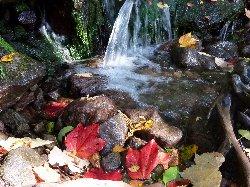 紅葉の大滝湧水