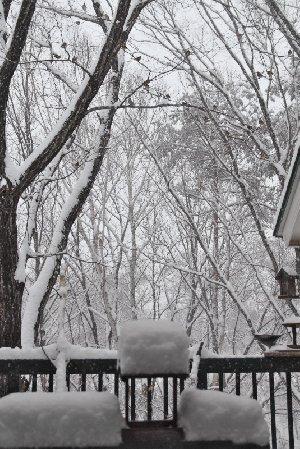 雪のベランダ