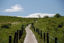 車山湿原の木道