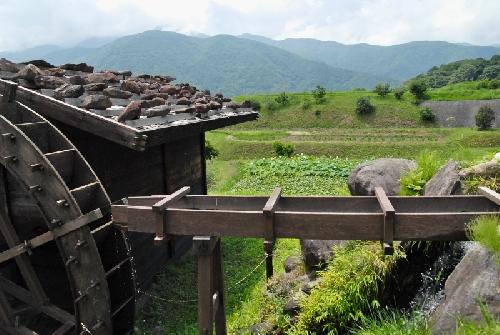水車小屋と蓮田