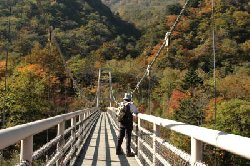 精進ヶ滝入り口の吊り橋
