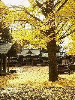 黄葉の高島城