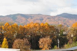 屋上庭園からの黄金色の景色