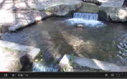 三分一湧水 動画