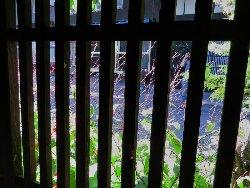 松屋茶房の窓
