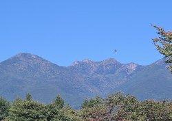 八ヶ岳の登山道は秋の彩りでしょう