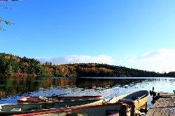 青苔荘前のボート乗り場からの白駒池