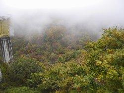 霧の八ヶ岳大橋