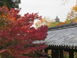 通天橋の向こうに東福寺殿鐘楼