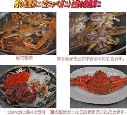 子持ち松葉ガニ(紅コッペ)