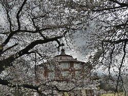 桜に覆われたアトリエ「ラ・リューシュ」