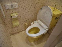 トイレの手すりと最新型ウォッシュレット