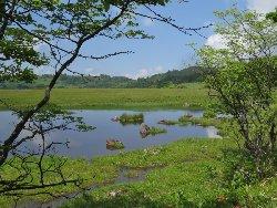 青空を写した池塘