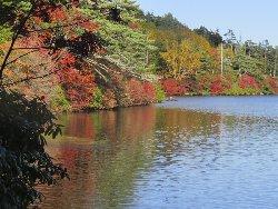 湖畔を彩るドウダンツツジの紅葉