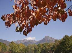八ヶ岳中央農業実践大学からの八ヶ岳