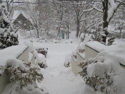 雪に埋もれた外階段