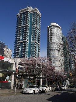 桜とマンション