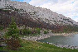 メディスン湖畔の山火事のあと