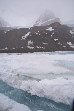 アサバスカ氷河の先端を流れる雪解け水