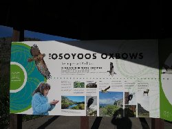 THE OSOYOOS OXBOWS