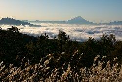 富士見平からの富士山