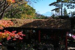 テラスから見える富士山