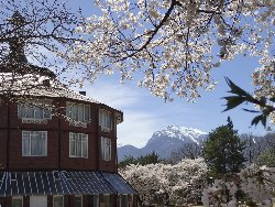 甲斐駒ヶ岳をバックに清春芸術村の桜