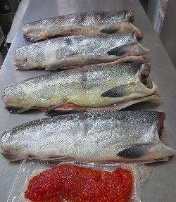 鮭と生筋子