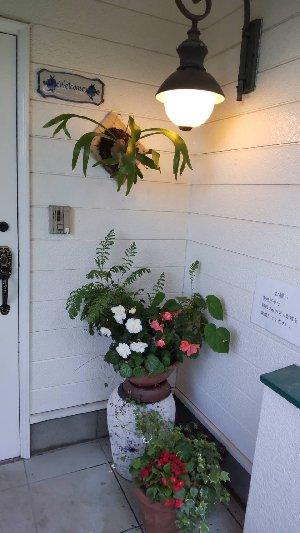 あるびおん玄関